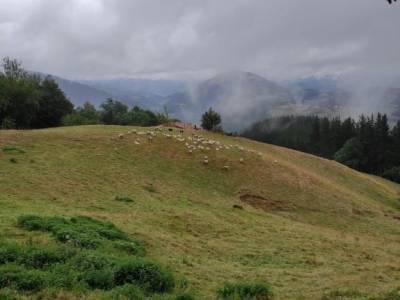 Parque Natural de Urkiola;monfrague fotos alto tajo rutas quedadas singles madrid experiencias en ma
